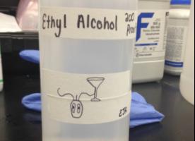 Alcohol Toxic algae
